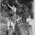 Apple Picking at the Bridgman farm, before 1920.