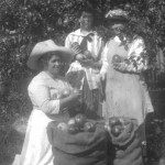 Apple Picking at Ruckle Farm (1908). L to R: Mrs. Mary Ruckle (wife of Daniel Henry Ruckle), Mrs. Helen Ruckle (wife of Alfred) and Mrs. Martha Margison (mother of Helen). This is believed to be a posed picture since women did not pick apples on Ruckle farm, leaving that to the men.