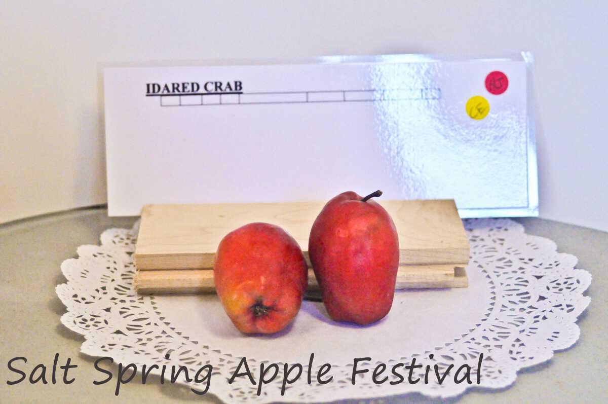 Apple Festival Salt Spring Island
